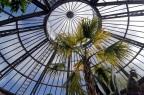 Jardin botanique