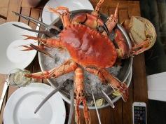 Un plateau de fruits de mer à déguster Chez Désirée !