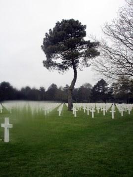Des tombes à perte de vue
