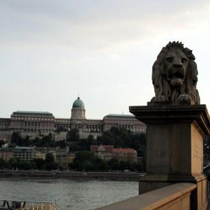 Les Lions du Pont des Chaînes