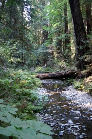 Petite rivière, havre de paix