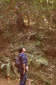 Toute petite à Muir Woods