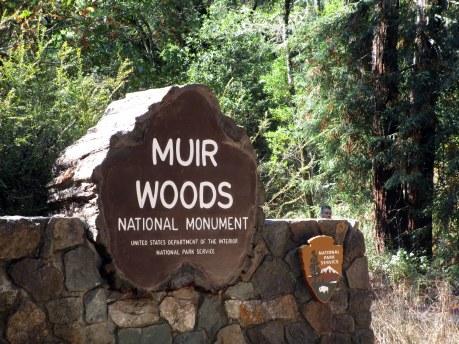 28. Muir Woods