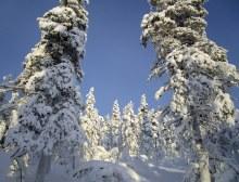 Randonnée Jyppyrä - Février 2018