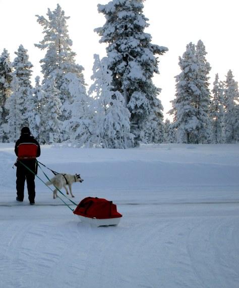 39. Laponie 2018 - Enontekio - EnMaudVoyages