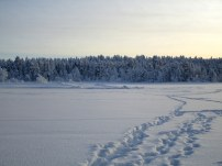 Enontekio - Laponie 2018