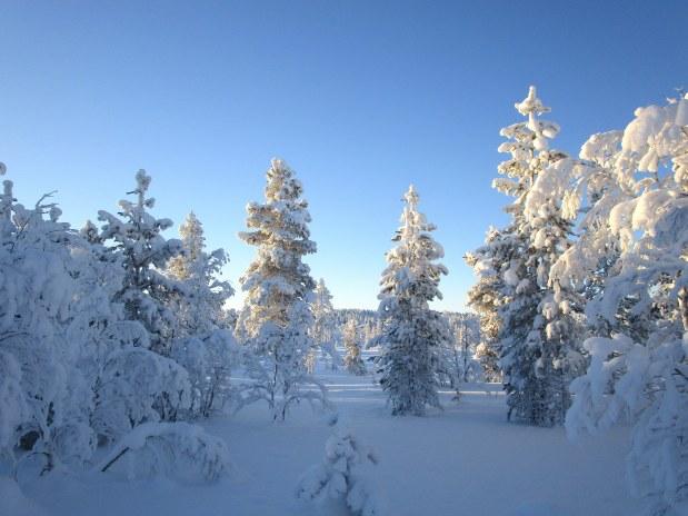 47. Laponie 2018 - Enontekio - EnMaudVoyages