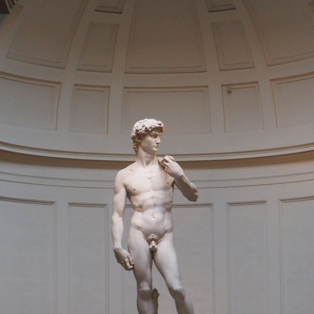 Firenze - David