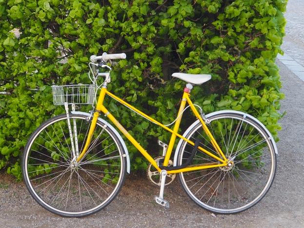 Vélo danois