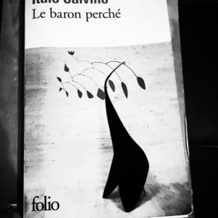 Un classique de la littérature italienne