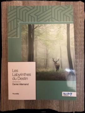 Les Labyrinthes du Destin - D.Allemand